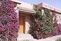 花いっぱいのホテル HKENZI BELERE エルフード