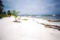 カリブ海を望むビーチ