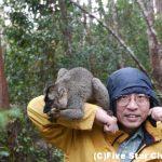 ベレンティ自然保護区はキツネザルの楽園〜マダガスカル