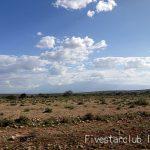 ~Endless Land 果てしない草原~ セレンゲティ国立公園サファリ