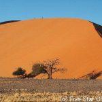 ナミブ砂漠と日の出と夕焼けとブッシュマン