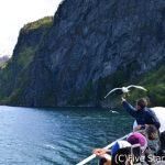 ありのままの…ノルウェー 絶景フィヨルドの旅