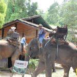 歴史と自然が共存する街チェンマイ