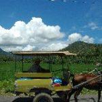 インドネシア・ロンボク島へ!