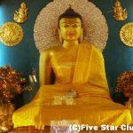 ブッダの歩いた道、仏跡の旅<インド>