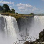 ジンバブエ、ザンビア、ボツワナ、南アフリカ!南部アフリカ4カ国周遊の旅