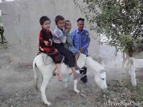 ウズベキスタン- シルクロードの歴史と人々の温かさに触れる旅