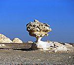 エジプト・まるで違う惑星にいるみたいな「白砂漠」