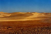 アッサラーム チュニジア -学生生活最後の旅-
