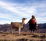 ペルー・かつて栄えたインカ帝国の首都へ