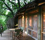 タンザニア・究極ロッジでサファリ体験