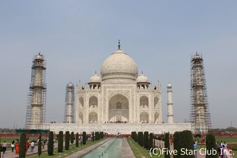 アニマルパラダイス☆インディア!!ベンガルタイガーを探して ~インド・ジャングルでサファリ三昧の旅~