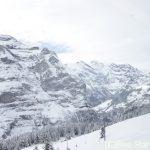 スイスの車窓から-冬-