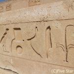 ヨルダン&エジプト遺跡巡り!ペトラ遺跡と中部エジプトを歩き尽くす旅