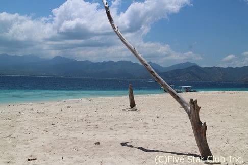 インドネシアで遺跡と珊瑚礁の海!ボロブドゥール&ロンボク島の楽園ギリ