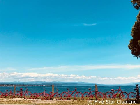 星空とホタルとワインを求めて!子連れニュージーランド南北横断紀行