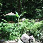 トレッキングを極めたマレーシア(コタキナバル・クチン)の旅6日間