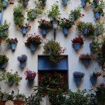 あなたがイメージするスペイン、ここにあり! アンダルシア地方4都市巡り―マラガ・セビリア・コルドバ・グラナダ―