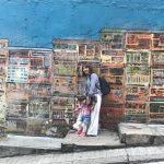 グルメとショッピングを楽しむ 子連れ香港の旅