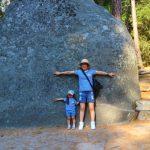 子連れでアメリカへ! ヨセミテ国立公園、ナパワイナリー巡り、フロリダディズニーワールドの旅