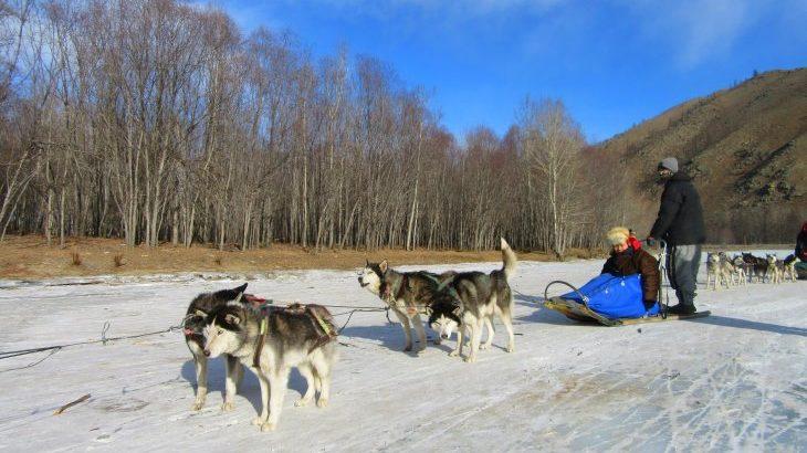 MK5(マジで凍える5秒前) 冬のモンゴルの楽しみ方とは? ~犬ぞり&旧正月体験 極寒モンゴル紀行~
